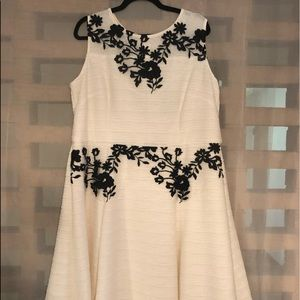 Taylor fit and flare cream embroidered dress NWT